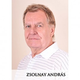 Zsolnay András